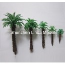 coconut tree B series